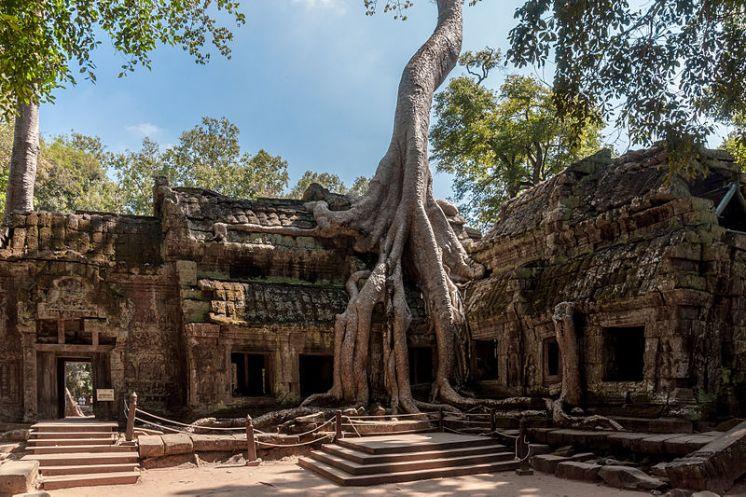 Angkor_SiemReap_Cambodia_Tha-Prom-Temple-01