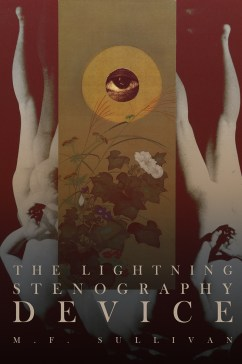 The Lightning Stenography Device