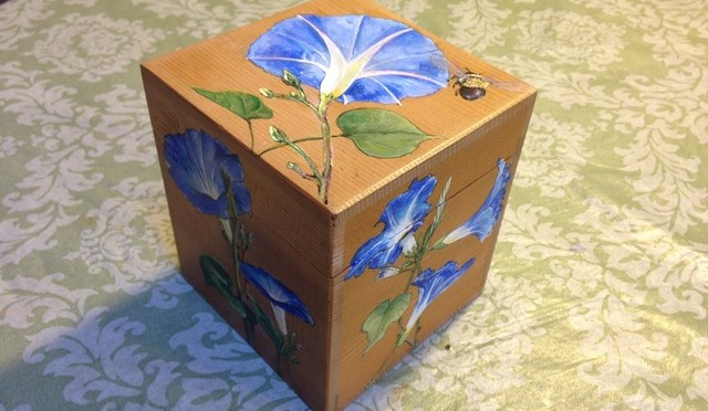 Morning Glory Box