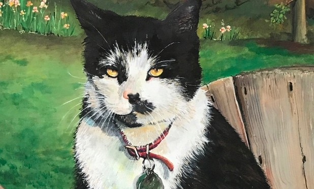 Cat Portrait Tuxedo with Attitude