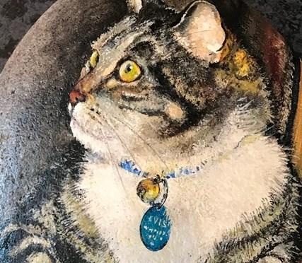 Watching her Owner Cat Portrait