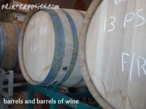 barrels and barrels of wine