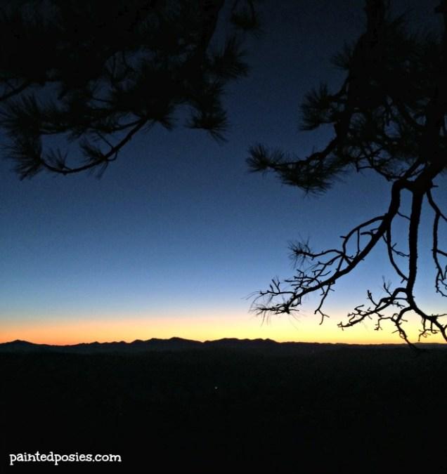 Thanksgiving Camping Silhouette 7 November 2014