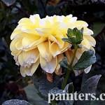 Картина на заказ-цветы10