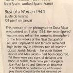 Пикассо,описание