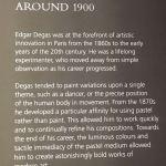 Дега-описание1