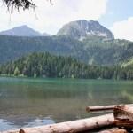 Черногория, пейзаж, заказать картину маслом3