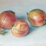 «Лук, лук и цибуля :)», пастель, 24х39 см-Оксана Железнякова