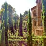 Нижний город. Салоники. греческие Храмы.