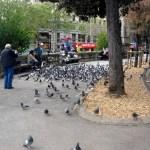 Городской пейзаж Барселоны2