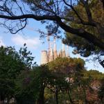 Храм Саграда Фамилия-городской пейзаж Барселоны