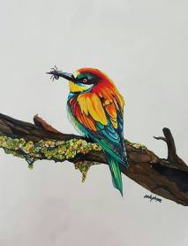 """Bee Eater"" Super Markers 11"" x !4"" Marker Paper Art by: Anh Pham Art supplies by: usartsupply.com"