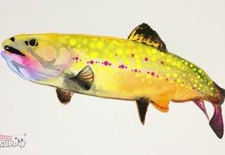 watercolor-fish_std.original