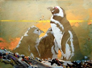 072914_robert-genn_penguinos