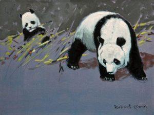 robert-genn_pandas