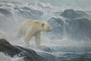 robert-bateman_salmon-watch_kermode-bear
