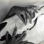 Georgia-OKeefe-Hands_and_Horse_Skull-Alfred-Stieglitz