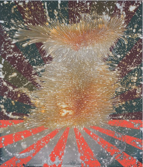 Barbara Takenaga_Harmo 2013_42 x 36_acrylic on linen