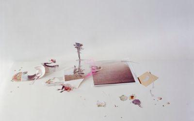 Between Her Garden and the Studio: Jessica Stockholder on Laura Letinsky, Part I