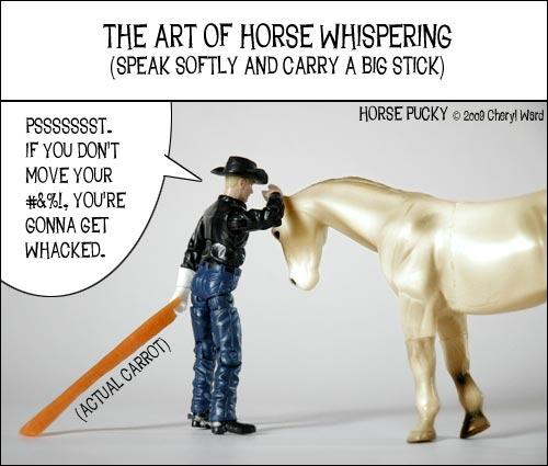 horse-whisperer1