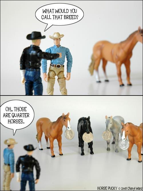 quarter-horses1