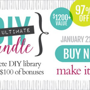 ••HOT DEAL•• The Ultimate DIY Bundle 2015