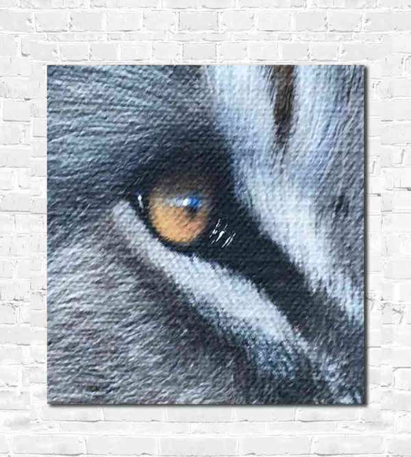Eye of a lion oil painting