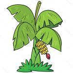Png Clipart Clip Art Of A Banana Tree