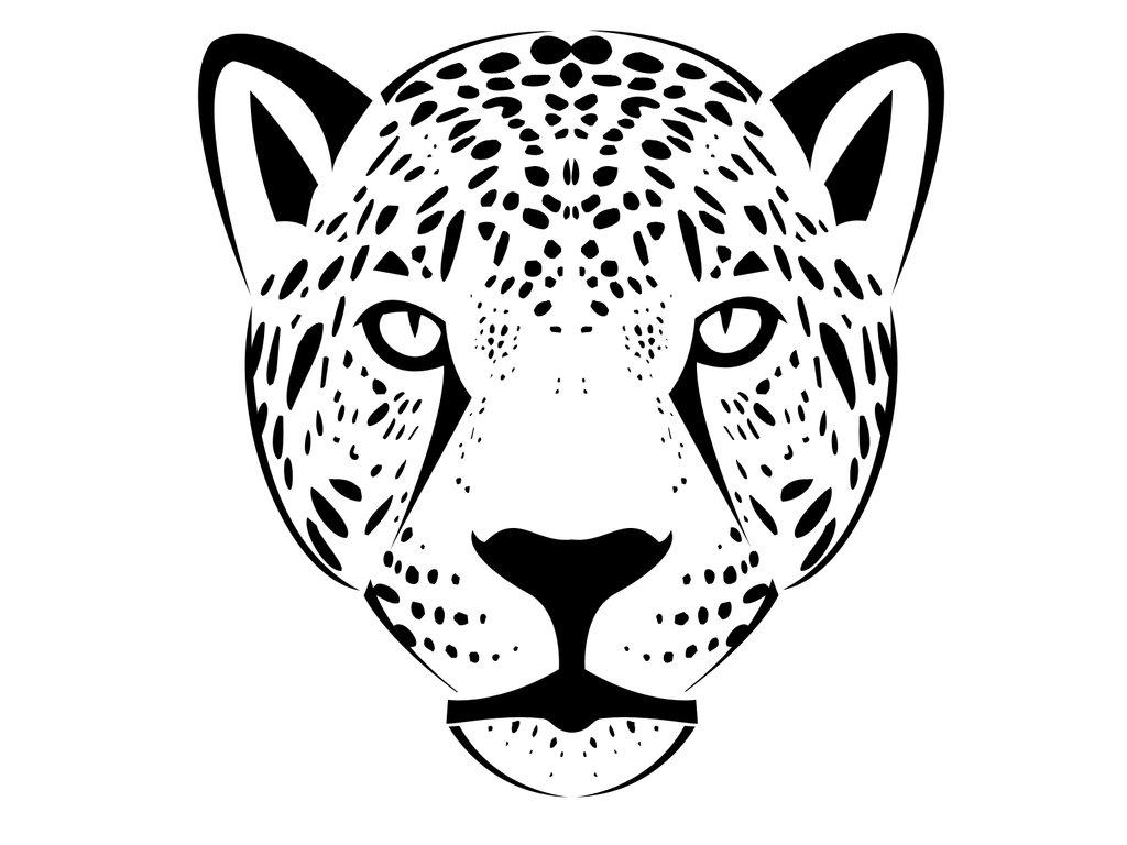 Jaguar Face Drawing At Paintingvalley