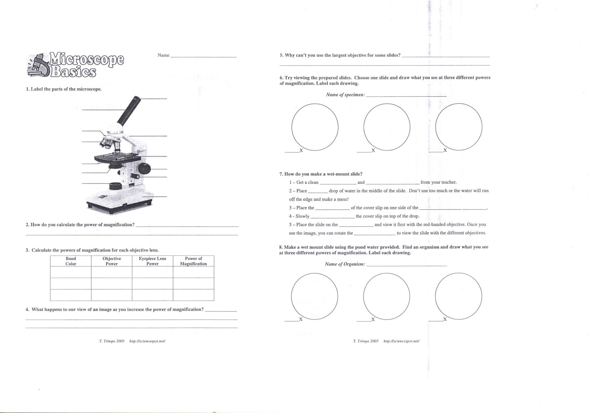 Microscope Drawing Worksheet At Paintingvalley