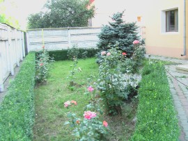 Front rose garden