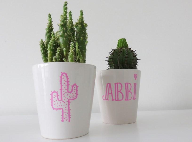 Cacti crafts