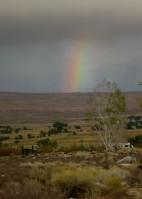 remnants of rainbow