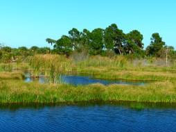 Wetlands within Savannas