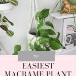 How To Make The Easiest Diy Macrame Plant Hanger Ever Video Tutorial Paisley Sparrow