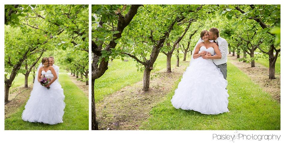 Orchard Wedding Photography, Orchard Wedding, Kelowna Wedding, Calgary Wedding Photography, Country Wedding Photography, Bride & Groom Wedding Photography,