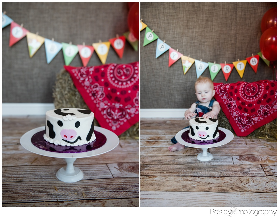 Airdrie Cake Smash Photographer, Cake Smash Photographer Airdrie