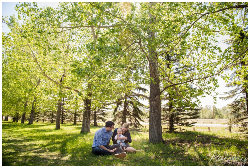 Forest Family Photography Calgary