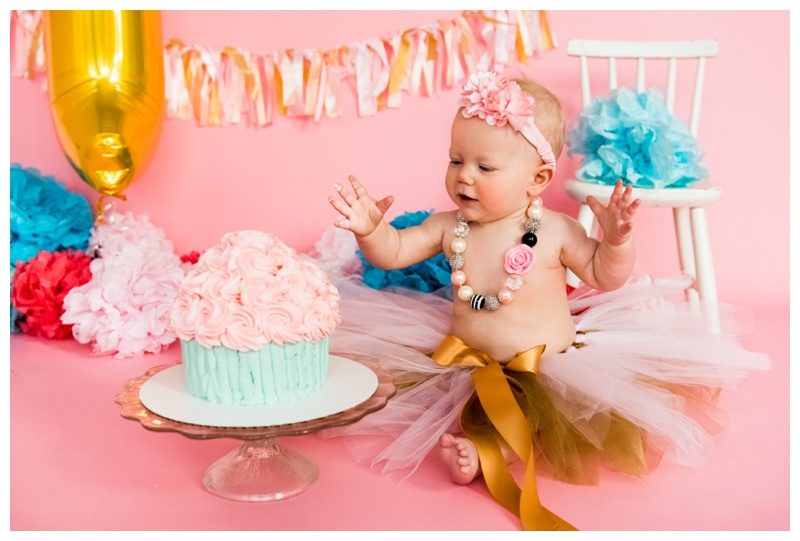 1st Birthday Cake Smash Photos