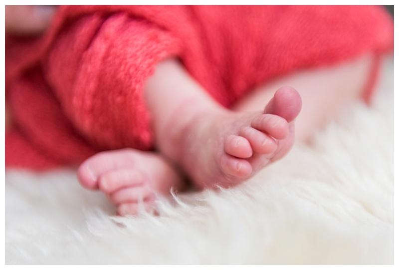 Lifestyle Newborn Photos Calgary