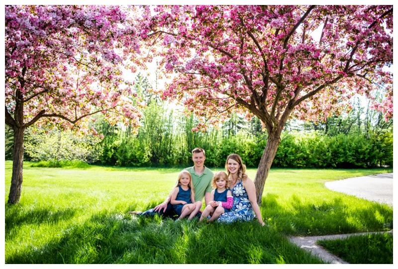 Calgary Cherry Blossom Family Photographer