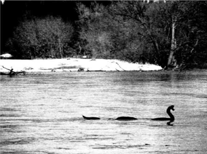 This image shot March 12 from the dike, not far from the Baptist Church, should be enough to silence those Saugie  non-believers.