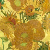 Nas pinturas de Van Gogh predomina a cor amarela (e isso tem uma explicação científica)