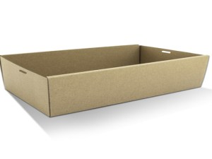 Rectangle Catering Trays