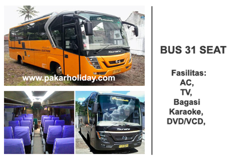 Bus Pakarholiday