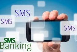 Semak Baki Akaun BSN Melalui SMS dan Pelbagai Fungsi BSN SMS Banking