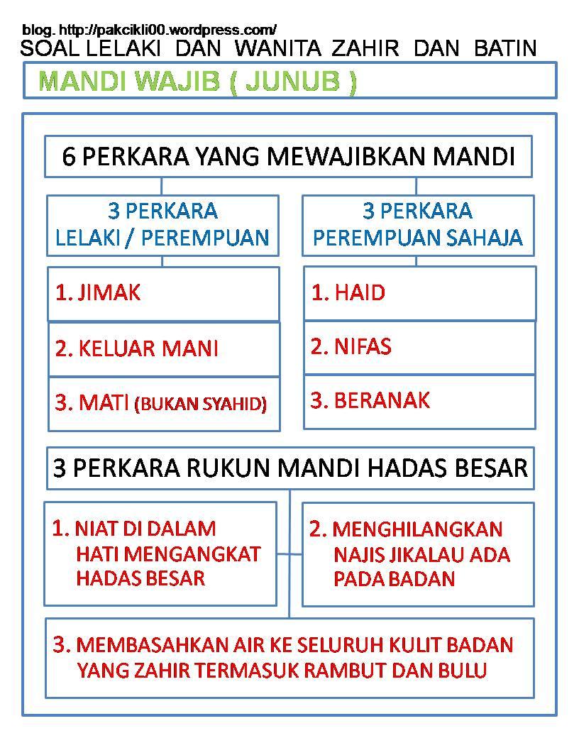 mandi wajib (junub)
