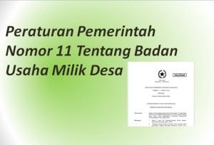 Peraturan Pemerintah Nomor 11 Tentang Badan Usaha Milik Desa