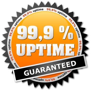 hosting-server-uptime