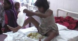 Find girls parent living monkeys forest girl discovered4